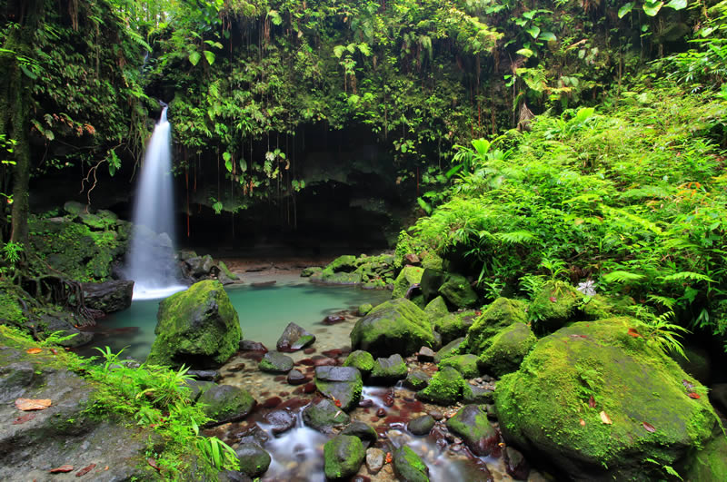 Emeral Pool on island of Dominica