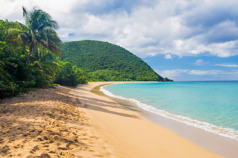 Deshaies beach on Grand Anse Guadeloupe