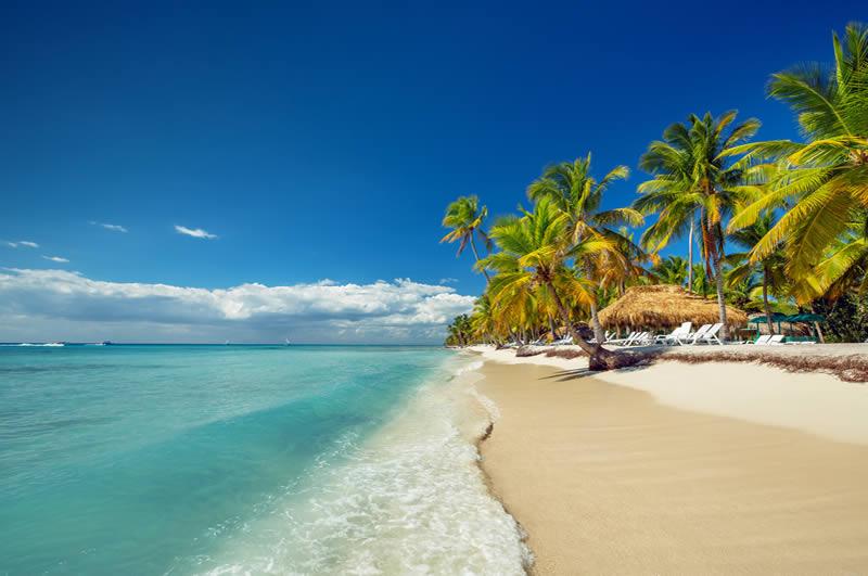 Punta Cana palm trees and white beach