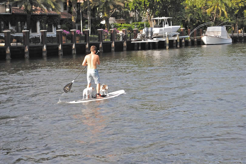 Paddleboard near Port Everglades