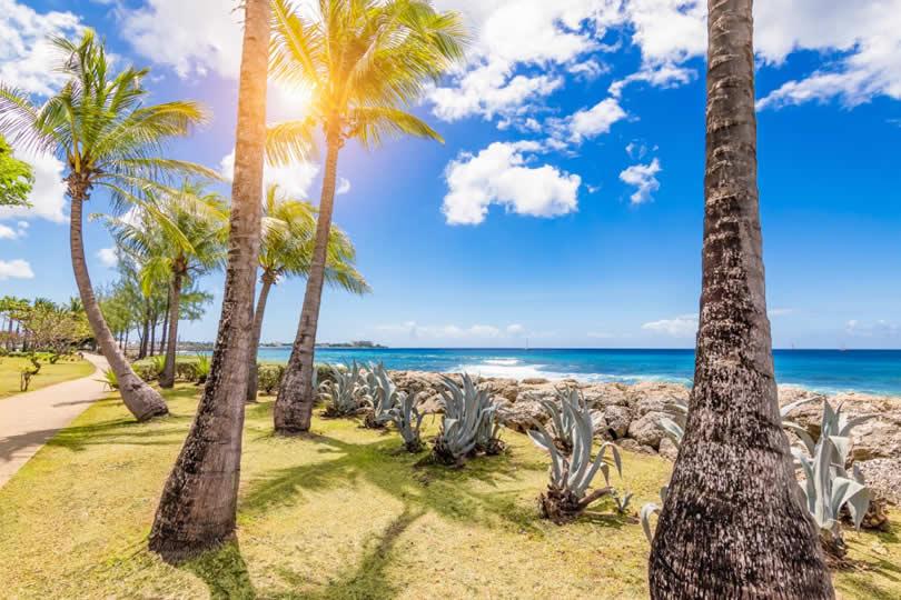 Sunny day on Barbados island